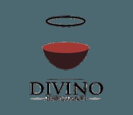havana vip tours divino logo